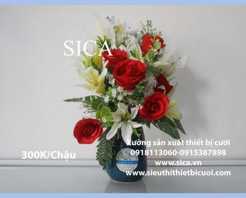 Cung cấp các mẫu chậu hoa đẹp nhất sài gòn