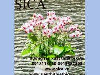 Tìm nơi bán chậu hoa gần nhất