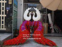 Bán bộ đuôi chim công màu đỏ