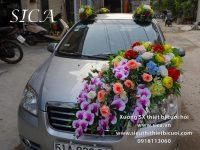 Trang trí đường hoa đẹp lên xe hơi giá rẻ